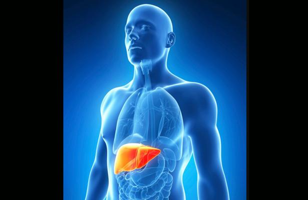 UNAM desarrollan método para diagnosticar hígado graso