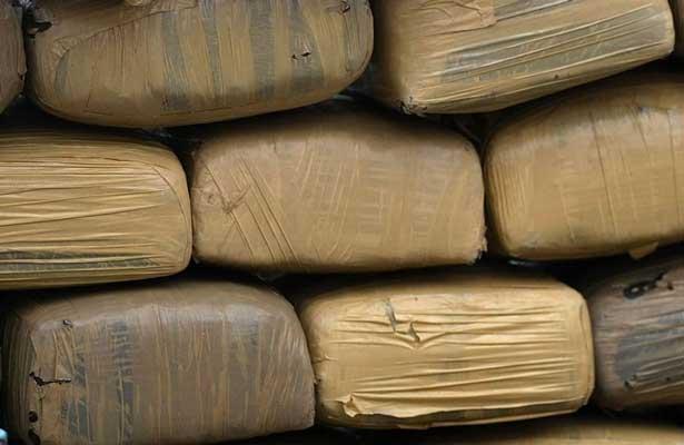 Aseguran 150 kilos de marihuana en Reynosa
