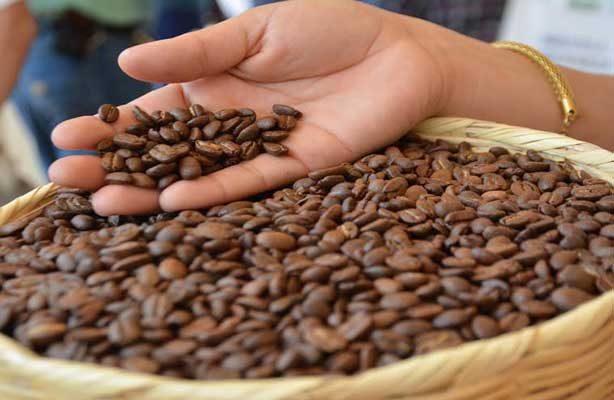 El Salvador albergará foro mundial de ciencias del café
