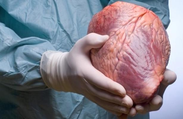 Siete de cada 10 mexicanos han manifestado su deseo de ser donadores de órganos: Cenatra