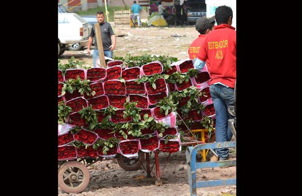 Listas, 284 mil toneladas de rosas para San Valentín