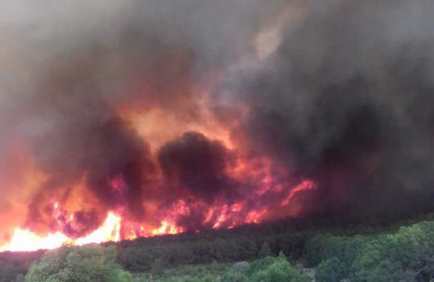 [Video] Reportan incendio forestal en la Sierra de Arteaga, Coahuila