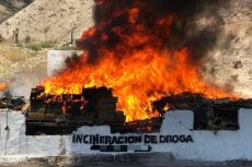 Queman droga en Baja California