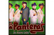 Festeja 25 años Panteras de Nuevo León