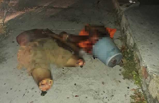 Dejan cuerpo descuartizado en Acapulco