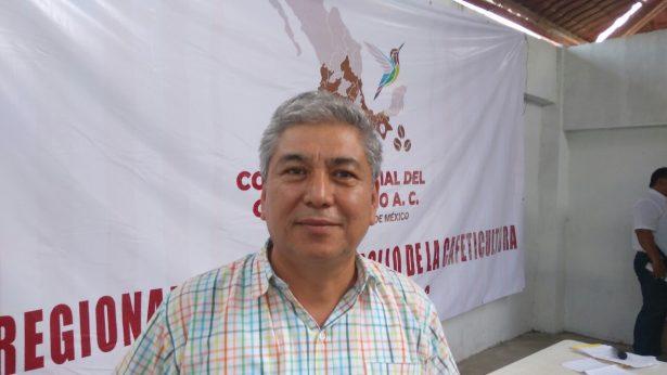 Reclaman atención cafetaleros, AMLO debe crear Instituto Nacional del Café Mexicano