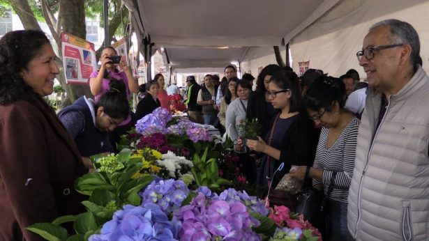 Destina Tlalpan más de 33 millones de pesos a programas sociales