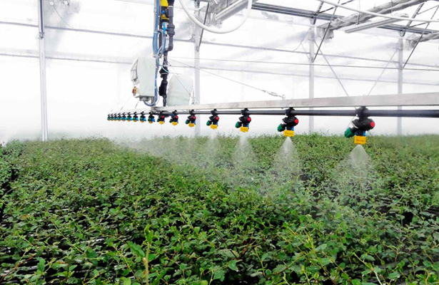 UNAM gana competencia internacional de tecnología para invernaderos