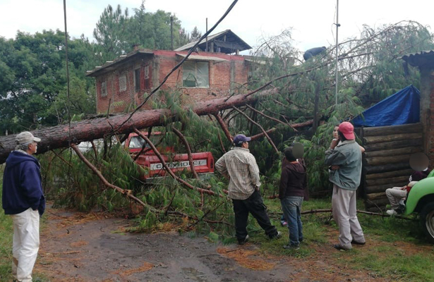 Tromba en Pátzcuaro deja árboles caídos, cortes de energía eléctrica y vehículos dañados