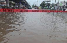 Tan solo en Monterrey, cierre de pasos a desnivel y vehículos varados por la lluvia; árboles y anuncios derribados