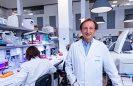 Presentan en México técnica que permite saber si un embrión está sano  sin tener que biopsiarlo