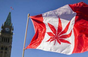 Indultará Canadá a los condenados por posesión de marihuana