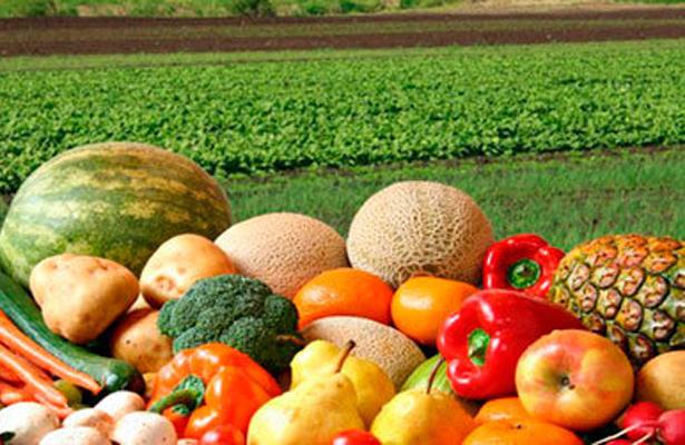 Alertan en México sobre la producción de alimentos con bajos nutrientes