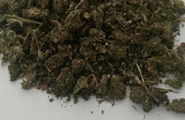 Es incontitucional prohibir el uso recreativo de la marihuana: SCJN
