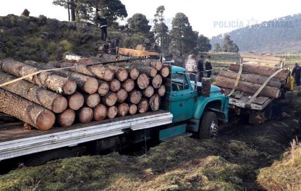 Aseguran dos camiones con material forestal en Michoacán