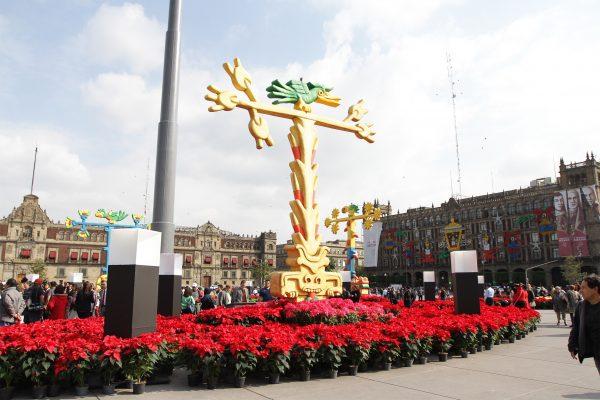 Jardín de nochebuenas, nuevo atractivo navideño del Zócalo capitalino