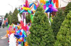 Árbol de Navidad y Noche Buena, una tradición a la baja