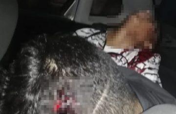 Sangrienta ejecución de tres jóvenes en Atizapán