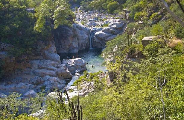 SEMARNAT no permitirá destrucción de la Reserva La Laguna en BCS