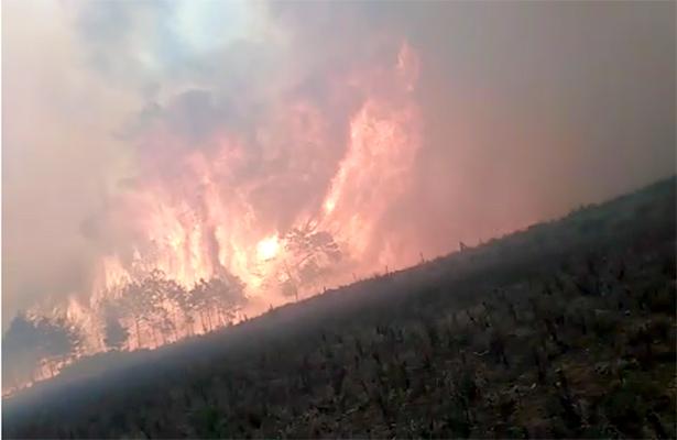 Incendio sigue vivo en Veracruz