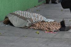 Hallan sin vida a hombre de la calle