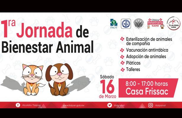 Se realiza Primera Jornada de Bienestar Animal en Tlalpan