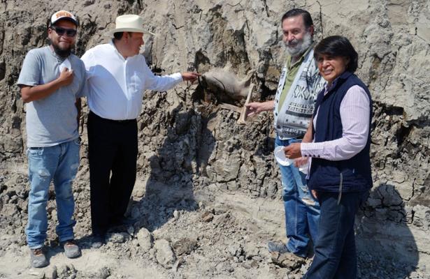 Hallan restos de otroMamut en Tultepec