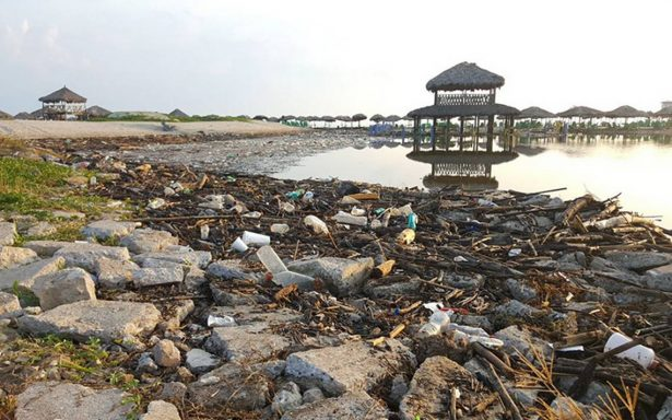 Basura tóxica inunda Miramar