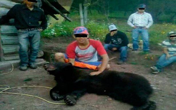 Jóvenes matan a oso negro 'solo por diversión' en Chihuahua