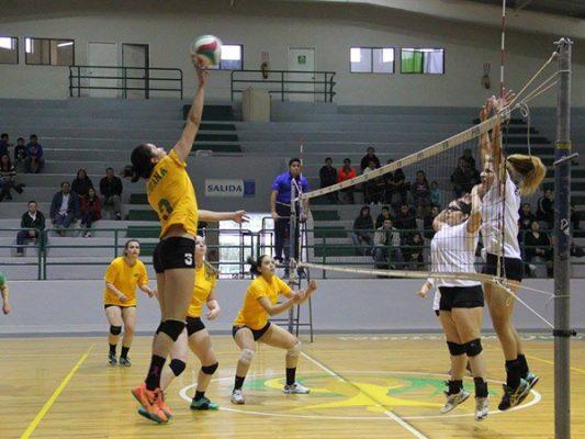 Gran jornada en el Festival Infantil y Juvenil de Voleibol
