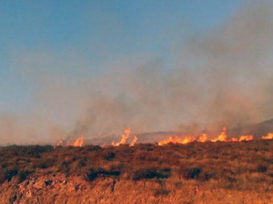 Crece incendio en Maneadero; registran 500 hectáreas dañadas