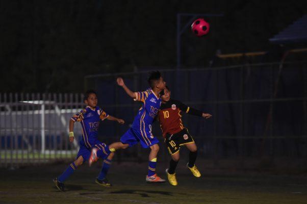 Los Tigres de Mexicali derrotaron 3-0 al Deportivo Monarcas
