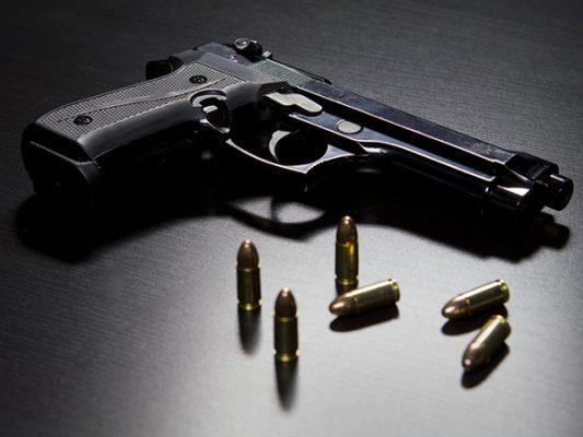 Ley contempla posesión  de armas de fuego