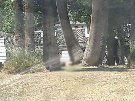 Muere hombre por causas desconocidas frente a la Plaza Calafia