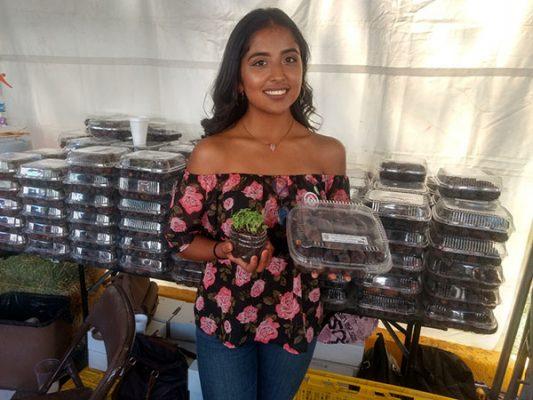 Promueven estudiantes del ICA proyectos de emprendedores y productos de Valle