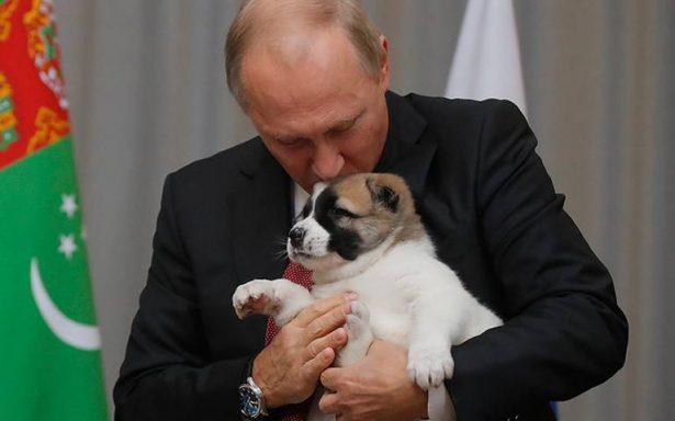 Putin se derrite de ternura al recibir como regalo de cumpleaños un cachorrito