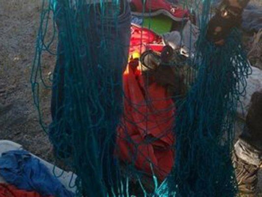 Confirma Comisión de Pesca aseguramiento de traficantes de totoaba