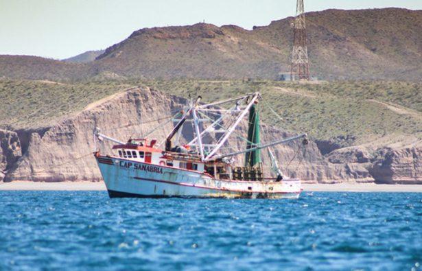 Prohíben navegación, pesca y turismo en el Alto Golfo de California