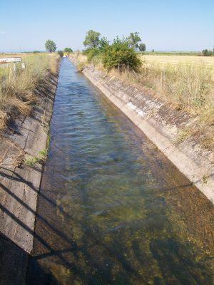 Proponen un consejo ciudadano del agua