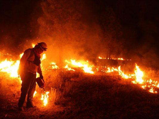Reducenriesgo de incendios forestales con quema prescrita en Parque Constitución de 1857