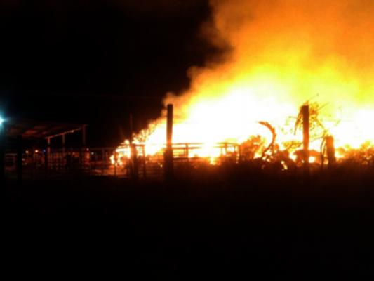 Fuego consume miles de pacas de pastura