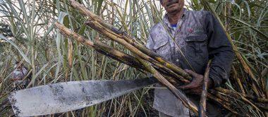 Industria azucarera pide a Peña Nieto negociar con firmeza el TLCAN