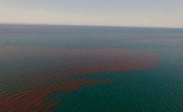 Resuelven el misterio de la mancha en el océano Pacífico