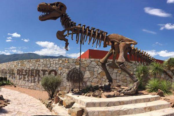Sin ser un zoológico, el Museo del Desierto de Coahuila ha llamado la atención a nivel nacional e internacional, tanto por sus instalaciones como por la reproducción en cautiverio del Lobo Gris Mexicano.