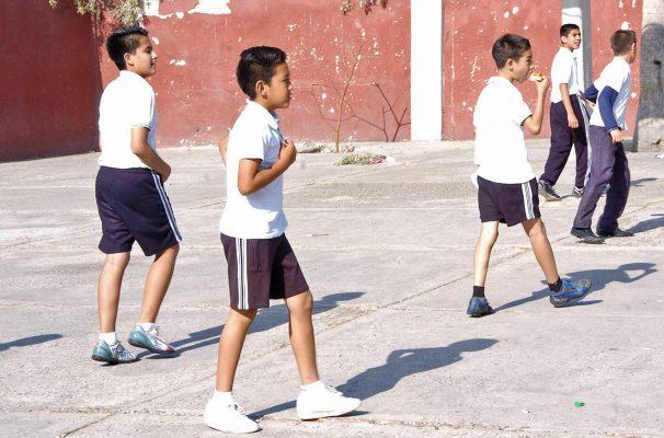 Más de 203 mil alumnos iniciarán el nuevo ciclo escolar