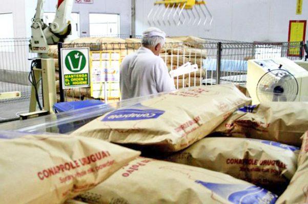La leche en polvo sigue siendo un gran obstáculo para el crecimiento de los productores locales.
