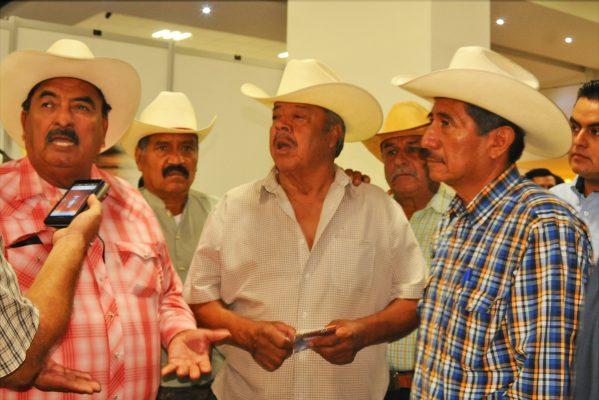 Necesario mayor impulso al sector agrario: Javier Colchado