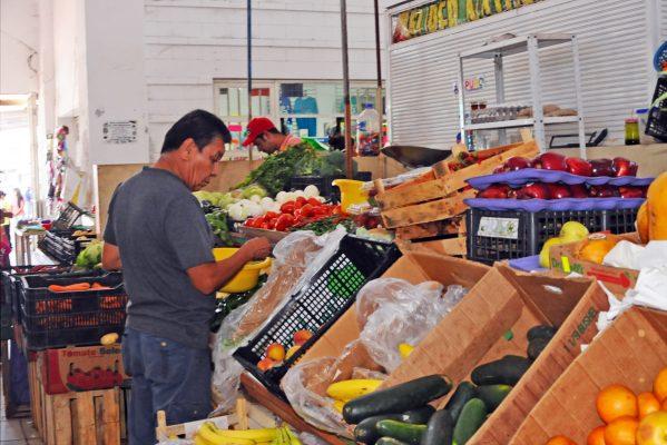 Plazas y Mercados y Prevención Social trabajarán en conjunto para la erradicación de roedores