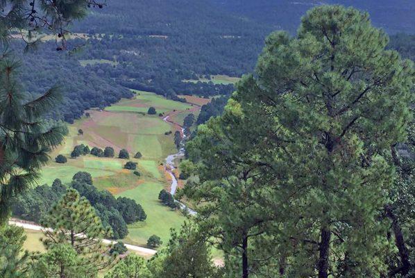 En el estado Durango, las cimas de la Sierra Madre Occidental invitan a disfrutar no solo de un increíble paisaje, sino también de una experiencia de vida con las diversas actividades ecoturísticas y de turismo cinegético que ofrece.