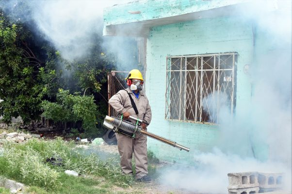 También hay nebulizaciones en lugares donde hay yerba, para terminar con el mosco que pueda ser transmisor del dengue.